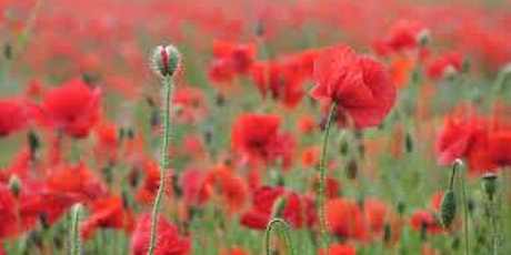 Remembrance Sunday Service at St Mark's tickets