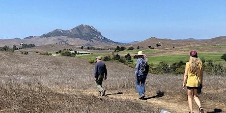 Hike and Meditation for Vitality