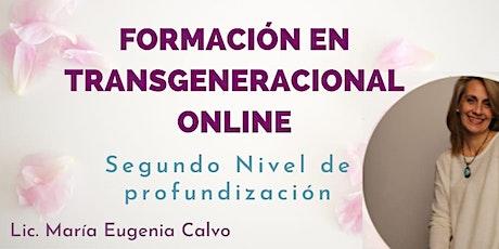 Formación en transgeneracional - Profundización entradas