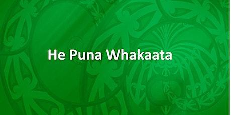 He Puna Whakaata Therapeutic Programme ki Hauraki Paeroa - 27 Nov 2020 tickets
