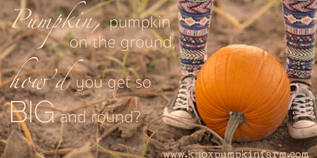 Knox Pumpkin Farm & Market tickets