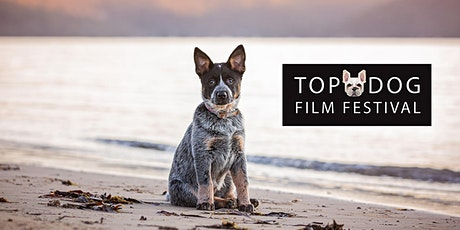 Top Dog Film Festival - Canberra Thurs 22 Oct 2020 tickets