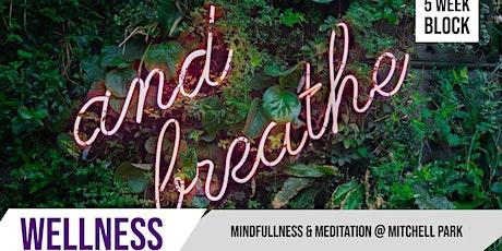 Mindfullness & Meditation |  Mitchell Park