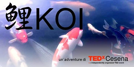KOI | TEDxCesena Adventure *NUOVA DATA* biglietti