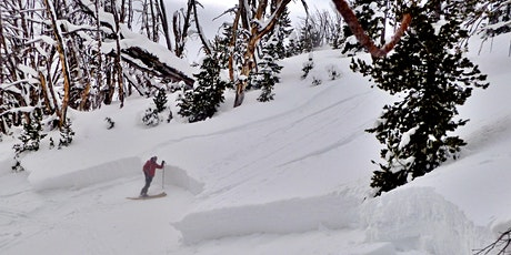 Avalanche Fundamentals tickets