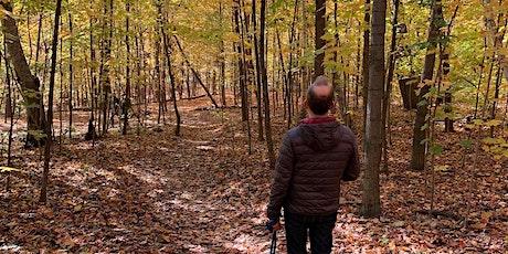 Bain de forêt (Shinrin yoku)  d'automne au  mont Royal - 14 novembre 2020 billets