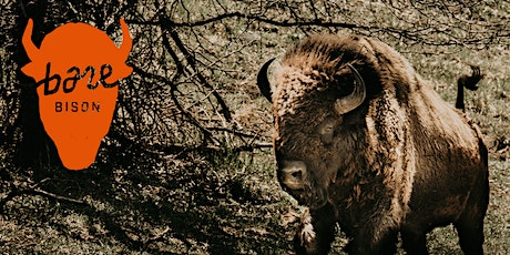 Bare Bison 5k Run/Walk tickets