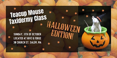 Teacup Mouse Taxidermy Class: Halloween Edition tickets