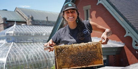 Conférence/Lecture – From Hive to Honey Jar tickets