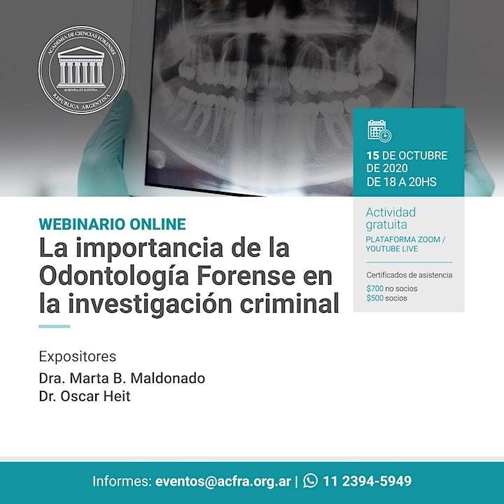 Imagen de La importancia de la Odontologia Forense en la investigación criminal