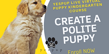 LIVE Virtual Puppy Politeness Group Course tickets
