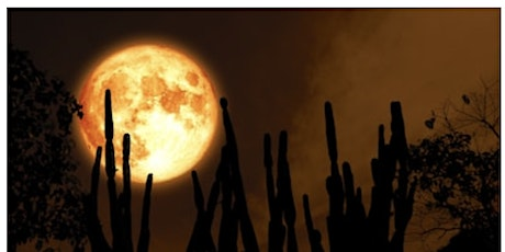 Harvest Full Moon Ritual In The Park tickets