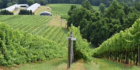 An Evening with Michael Shaps - Virginia's Winemaker | Oct 14 @ 7pm | Wine! tickets