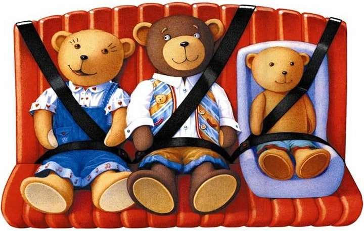 FREE Child Car Seat Safety Check June 2021 image