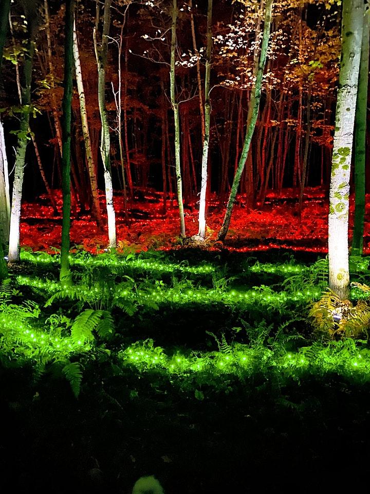 Folklore Fall Trail image