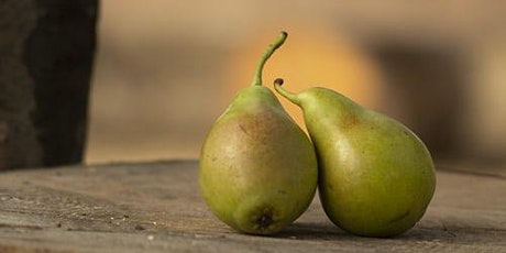 Minimal Pears biglietti