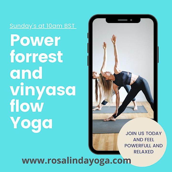 Online Power, Vinyasa flowYoga image