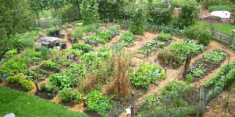 Virtual workshop: Permaculture - The future of food production? tickets