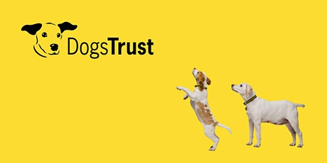 Online Family Workshops with Dogs Trust tickets