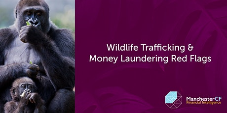 Wildlife Trafficking & Money Laundering Red Flags tickets