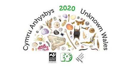 Cymru Anhysbys Ddigidol 2020 | Digital Unknown Wales 2020 tickets