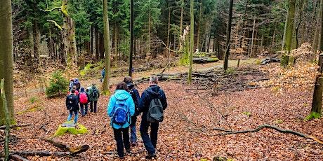 So,01.11.20 Wanderdate Single Wandern Fuchsstein & Fuchstanz  für 30-49J Tickets
