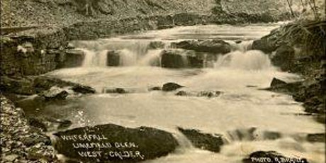 Limefield Falls - meet the EcoW Q&A tickets