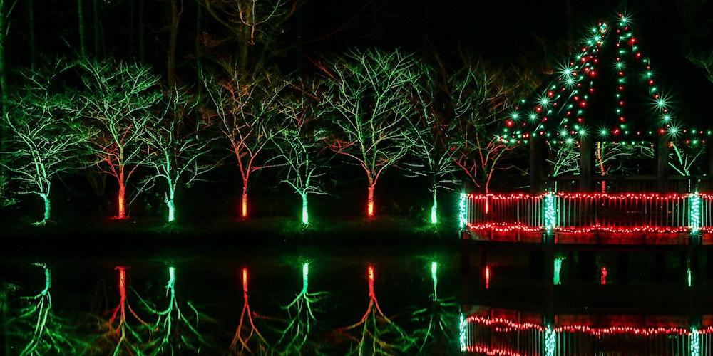 https%3A%2F%2Fcdn.evbuc.com%2Fimages%2F113164357%2F229293539494%2F1%2Foriginal - Meadowlark's Winter Walk Of Lights Meadowlark Botanical Gardens December 28