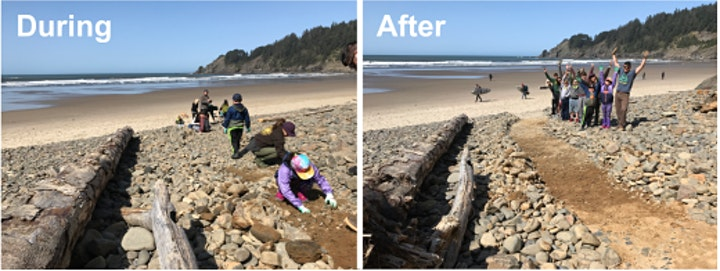 Beach Access Improvement - Oswald West Action Week image