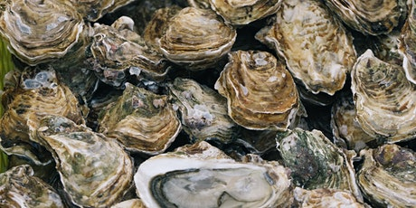 Bowmore & Oysters tickets