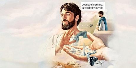 BENEFICIESE:  La Vida y Ministerio de Jesucristo. Los 4 Evangelios. ingressos