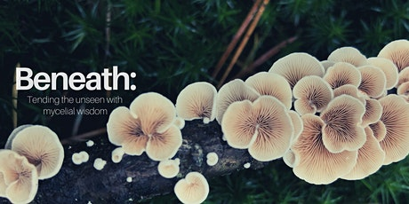 Beneath: Tending the Unseen with Mycelial Wisdom tickets
