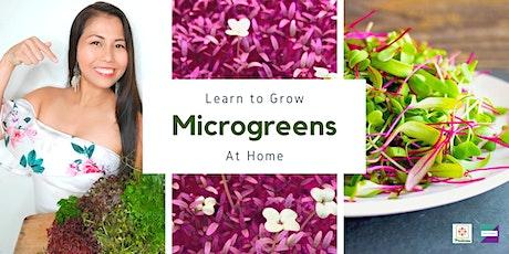 Virtual Urban Farming Workshop - Learn to Grow Microgreens at Home tickets