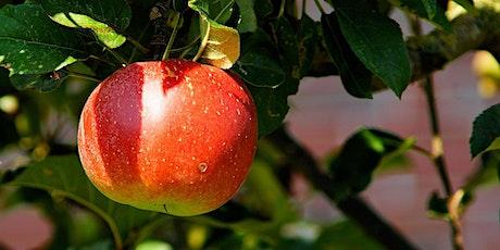 Growing Apples in My Backyard tickets