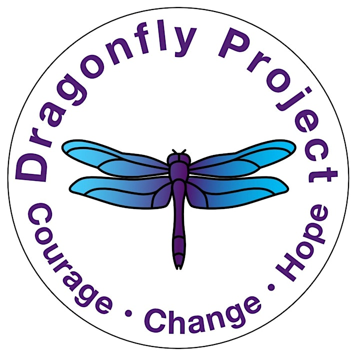 Dragonfly Champion Domestic Abuse Awareness Workshop image