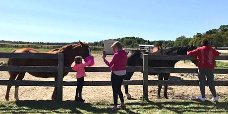 October Open Days at Unbridled tickets