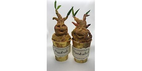 Wizarding Week Make Your Own Mandrake