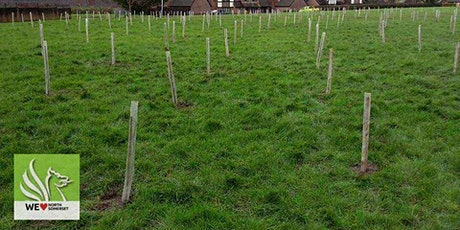 Tree Planting on Barker Close open space tickets