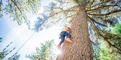 Touch the Sky - High Ropes in the Mountains tickets