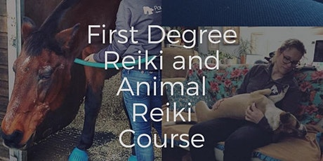 First Degree Reiki and Animal Reiki course, 5 Sessions tickets