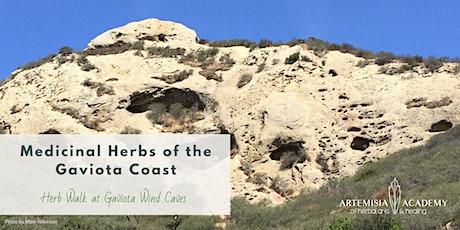 Medicinal Herbs of the Gaviota Coast - Herb Walk at Gaviota Wind Caves tickets