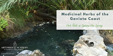 Medicinal Herbs of the Gaviota Coast - Herb Walk at Gaviota Hot Springs tickets