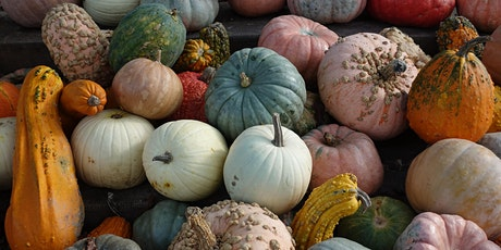 Cooking for Wellness Fall Webinars - The Versatile Winter Squash tickets
