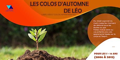 Colo Apprenantes Léo Lagrange Vaucluse - Séjour 2 billets