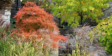 Fall Colours Guided Tours: TBG and Edwards Gardens tickets