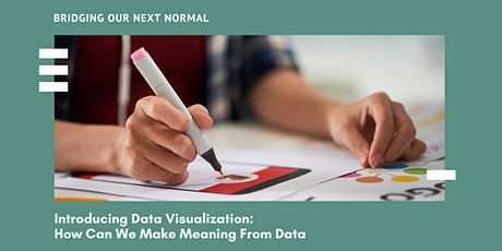 Introducing Data Visualization:  How Can We Make Meaning From Data