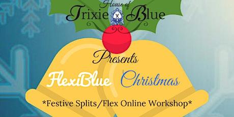 FlexiBlue Christmas Online Splitss Workshop