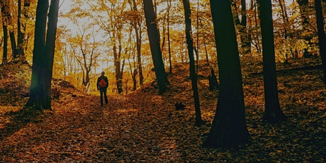 Autumn Wake Up: Forest Bathing Series tickets