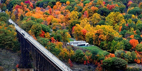 Fall Harvest Hudson Valley Day Trip: Foliage, Walkway, Wine & Cider tickets
