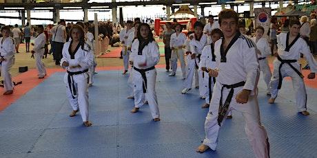 Lezione di prova Taekwondo biglietti